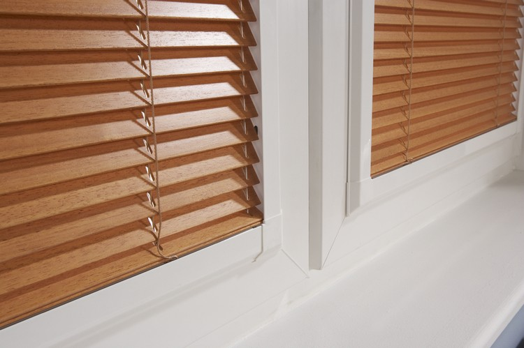 venetian blinds on French doors